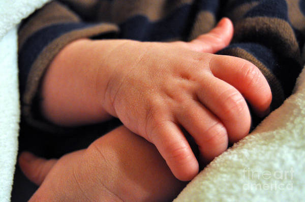 Photograph - Baby Hands by Staci Bigelow