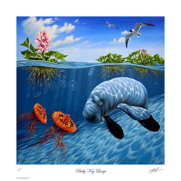 Above And Below Wall Art - Painting - Baby Key Largo by Philip Slagter
