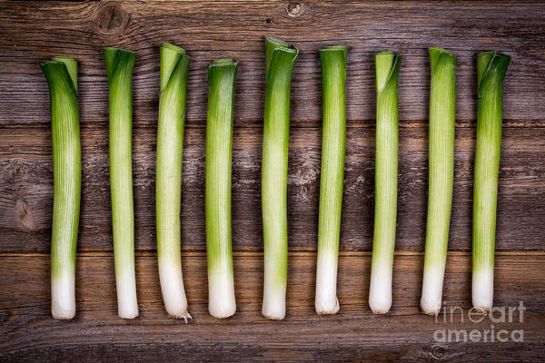 Rustic Photograph - Baby Leeks Vintage by Jane Rix