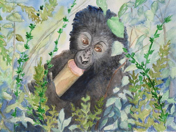 Baby Gorilla Painting - Baby Mountain Gorilla by Patricia Beebe