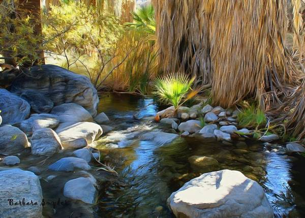 Sand Creek Painting - Baby Palm Canyon Creek  by Barbara Snyder