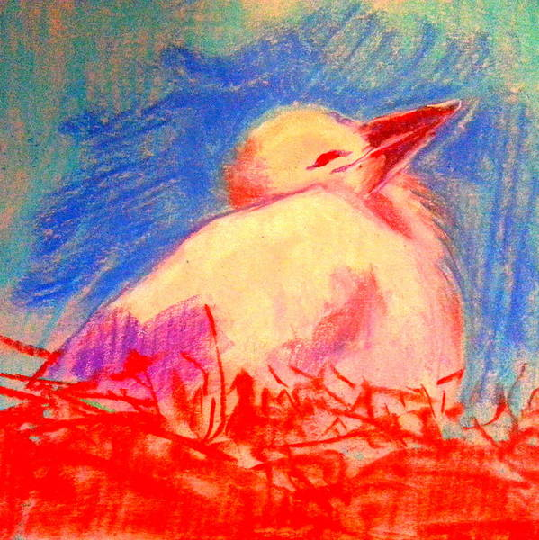 Stork Painting - Baby Stork by Sue Jacobi