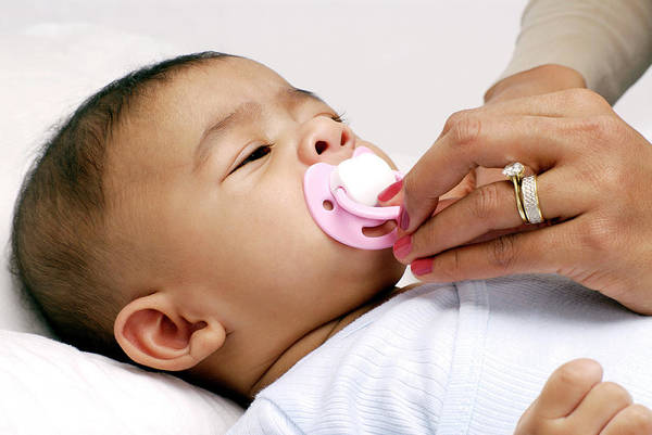 Parental Care Photograph - Baby Sucking A Dummy by Lea Paterson/science Photo Library