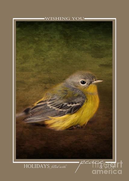 Photograph - Baby Warbler Bird Christmas Cards by Jai Johnson