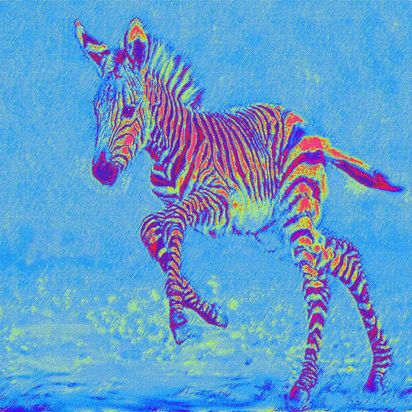 Running Digital Art - Baby Zebra In Motion by Jane Schnetlage