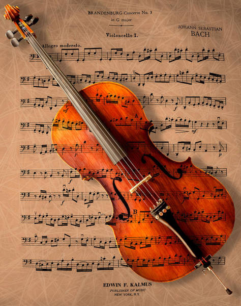 Note Wall Art - Photograph - Bach On Cello by Sheryl Cox