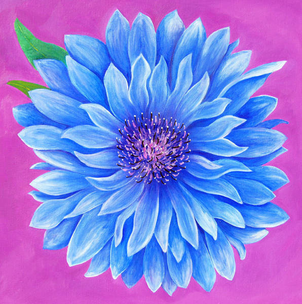 Blue Cornflower Painting - Bachelor Button by Pamela Nations