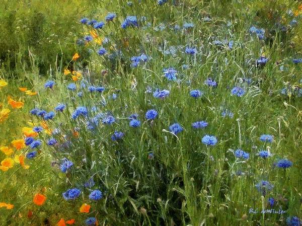 Painting - Bachelor's Meadow by RC DeWinter