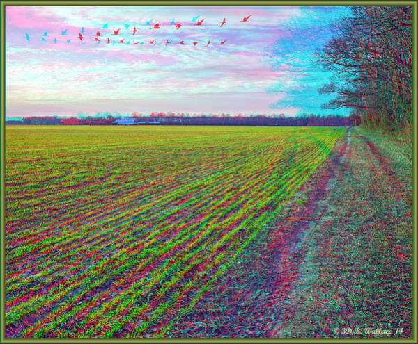 Anaglyph Photograph - Back Forty - Use Red/cyan Filtered 3d Glasses by Brian Wallace