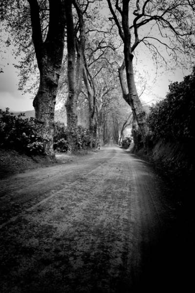 Photograph - Back Road East by Joseph Amaral