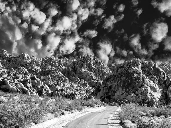 Yucca Palm Photograph - Back Road Joshua Tree by Dominic Piperata