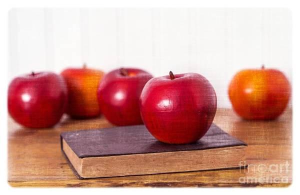 Schooling Wall Art - Photograph - Back To School Apples by Edward Fielding