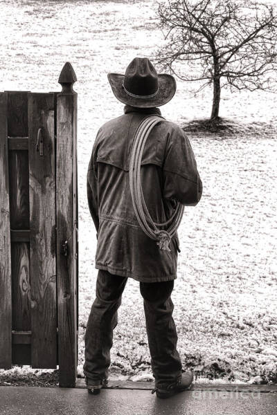 Cowboy Hat Photograph - Back To Work by Olivier Le Queinec