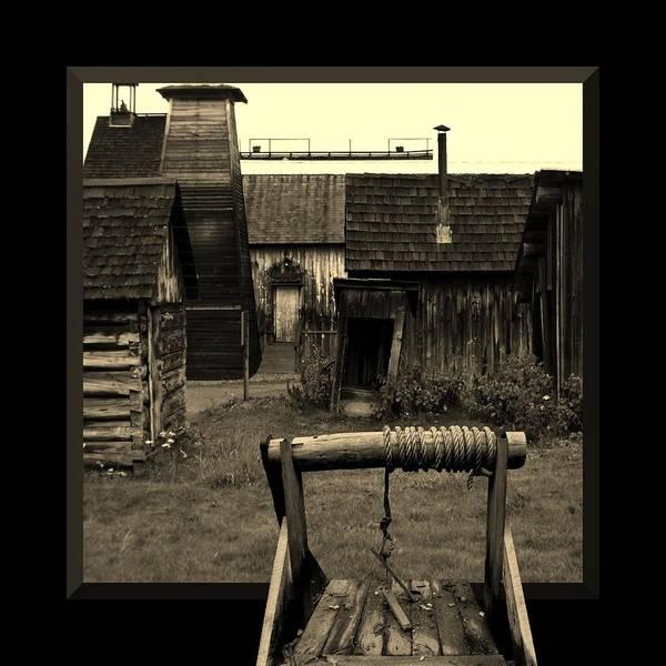 Photograph - Back Yard Gold Mine by Barbara St Jean