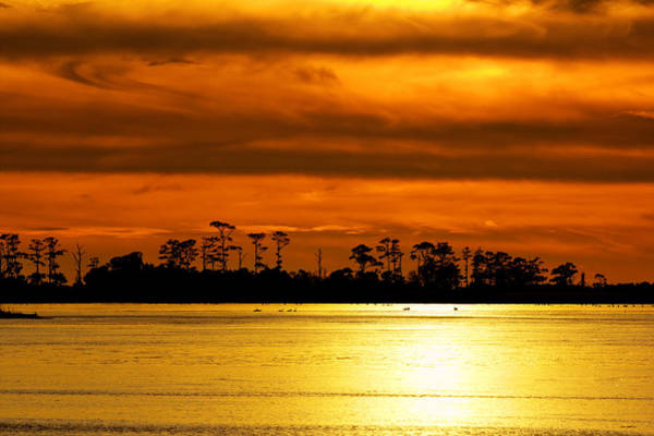 Photograph - Backbay Winter Sunset by Pete Federico