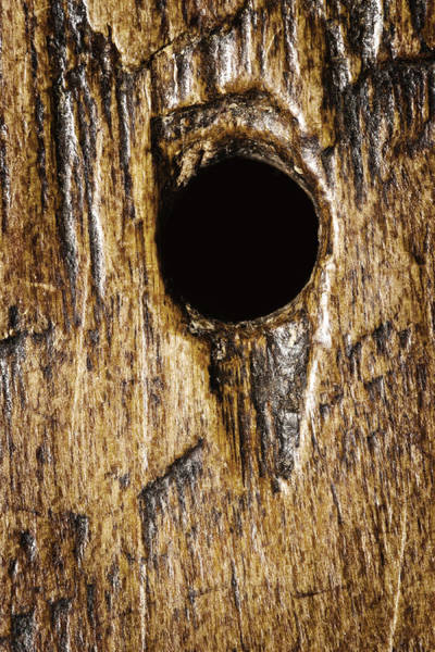 Wall Art - Photograph - Background  Wood Texture Rough Flat Surface With Hole by Donald  Erickson