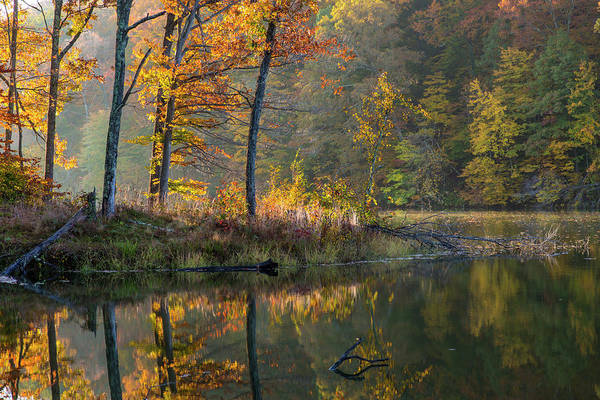 Brown County State Park Photograph - Backlit Trees On Lake Ogle In Autumn by Chuck Haney