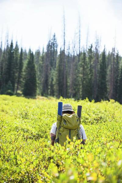 Jeremy Photograph - Backpacker Hiking Through Bushes, Routt by Dustin Doskocil