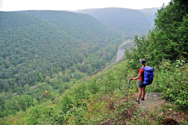 Tioga Photograph - Backpacking West Rim Trail Pennsylvania by HagePhoto