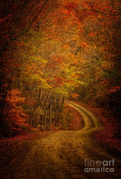 Photograph - Backroad Color by Larry McMahon