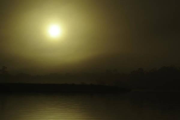 Digital Art - Backwater Gold by Michael Thomas