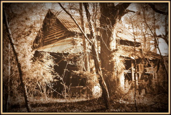 Photograph - Backwoods Barn In Sepia by Lisa Wooten