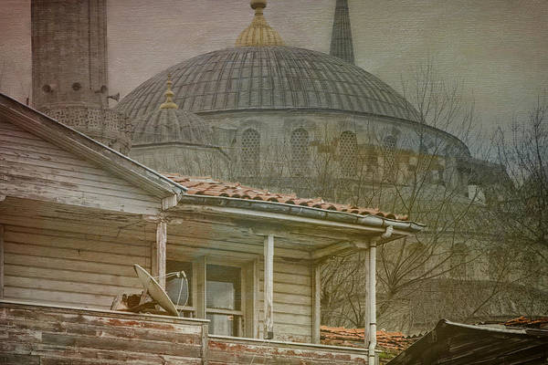 Mosque Photograph - Backyard Splendor by Joan Carroll