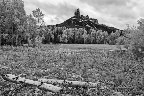 Photograph - Backyard Thoughts by Jon Glaser