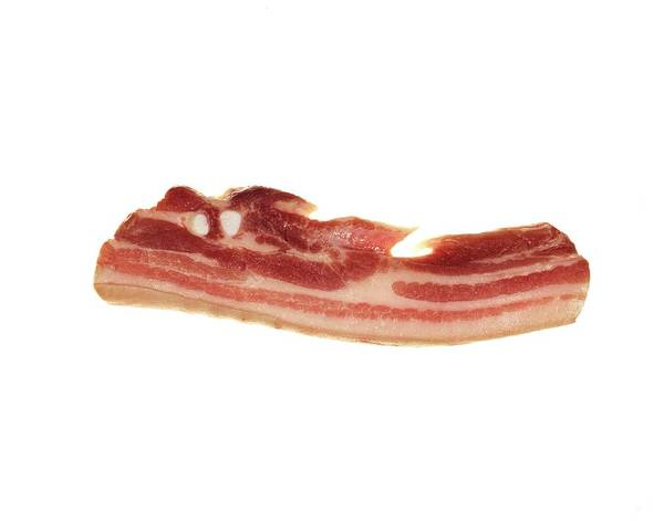 Bacon Wall Art - Photograph - Bacon Rasher by Ton Kinsbergen/science Photo Library