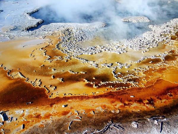 Photograph - Bacteria Mat 3 by Tarey Potter