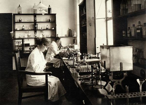 Johannesburg Wall Art - Photograph - Bacteriology Laboratory by American Philosophical Society
