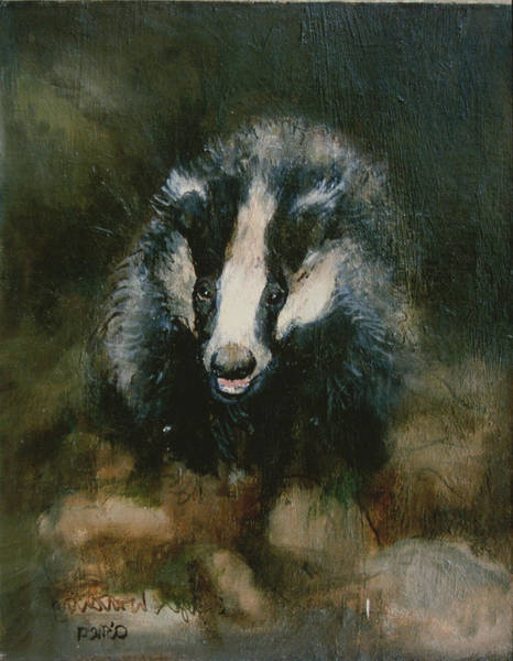 Nocturnal Wall Art - Painting - Badger Watching by Ellie O Shea