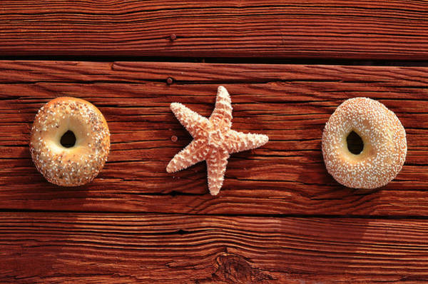 Something Different Photograph - Everything Bagel by Laura Fasulo