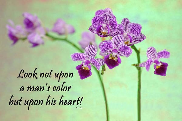 Photograph - Bahai Purple Orchid Quote by Rudy Umans