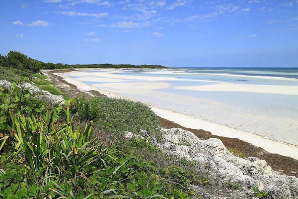 Bahia Honda Photograph - Bahia Honda Key by Rudy Umans
