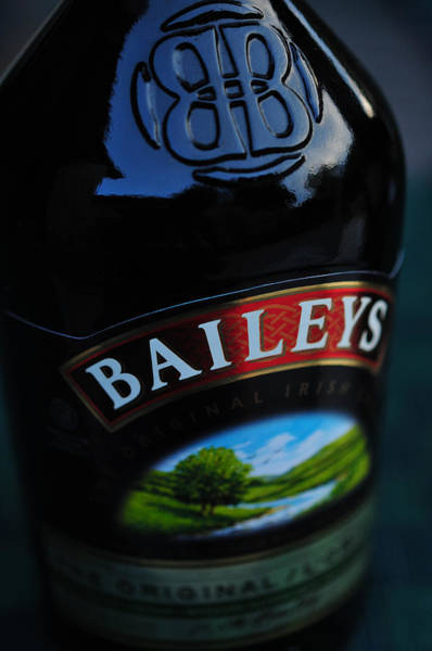 Photograph - Baileys 2006 by Dragan Kudjerski