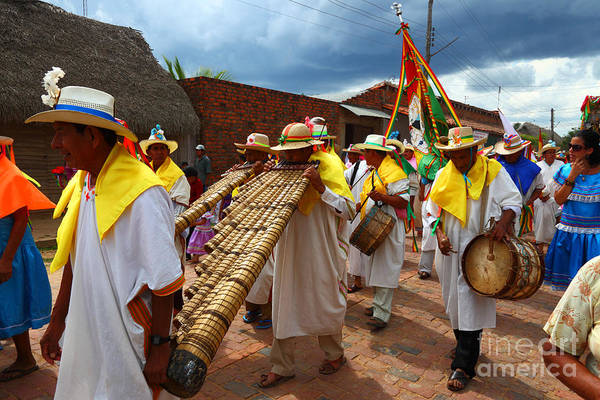 Photograph - Bajon Musician In San Ignacio De Moxos Bolivia by James Brunker
