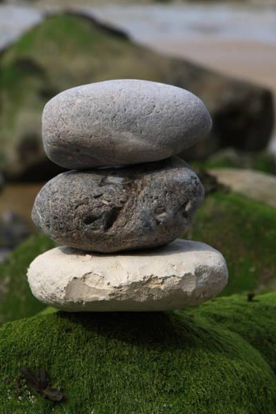 Photograph - Balance In Nature by Aidan Moran