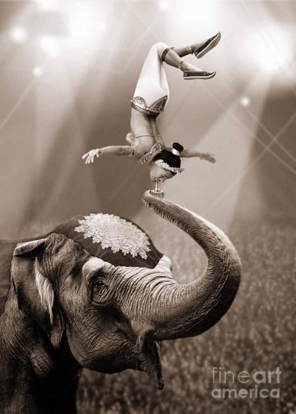 Circus Circus Photograph - Balancing Act by Jon Neidert