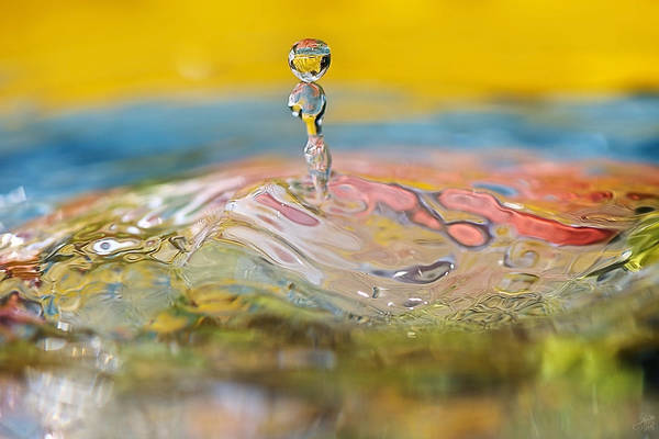 Drops Of Water Photograph - Balancing Act by Lisa Knechtel