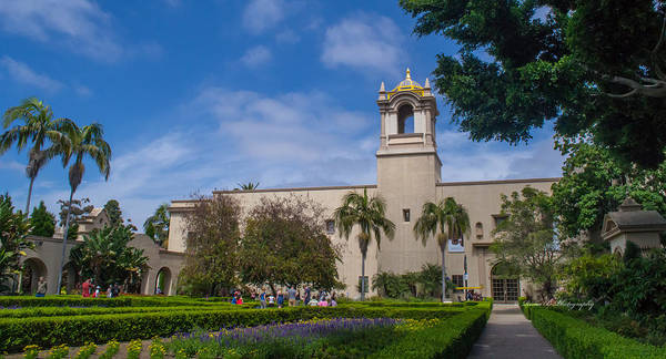 Photograph - Balboa Park by Rima Biswas