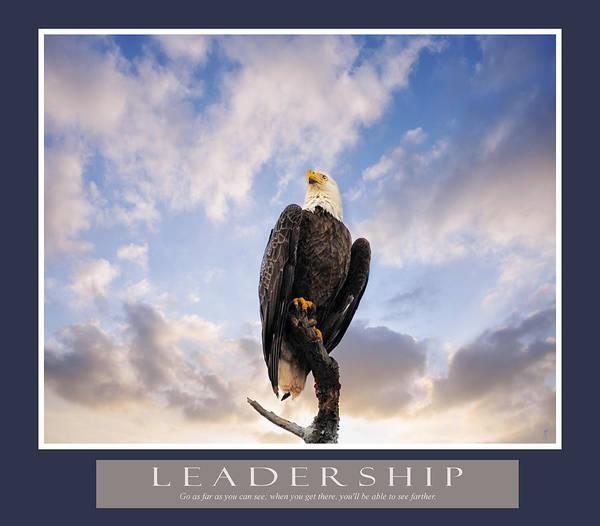 Photograph - Bald Eagle Motivational Leadership Print by Jai Johnson