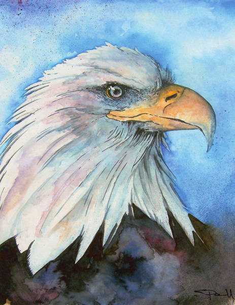 Painting - Bald Eagle by Sean Parnell