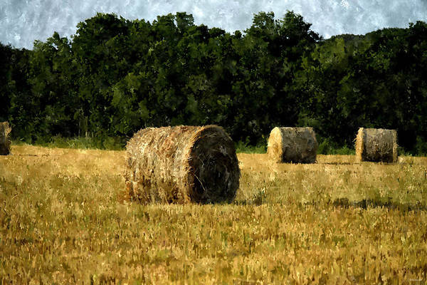Photograph - Bales Of Hay In A Texas Field In Digital Paint by Sarah Broadmeadow-Thomas