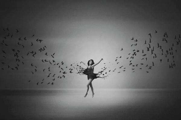 Tale Photograph - Ballerina Flight Of Birds by Mark Biwit