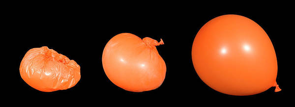 Demonstrating Wall Art - Photograph - Balloon Expanding As It Warms by David Taylor/science Photo Library