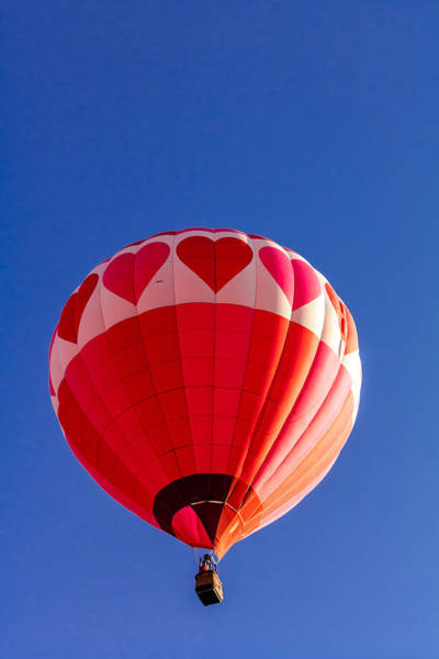 Photograph - Balloon Love by Teri Virbickis