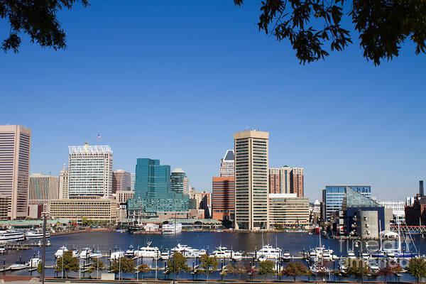 Photograph - Baltimore Harbor Skyline by Steven Frame