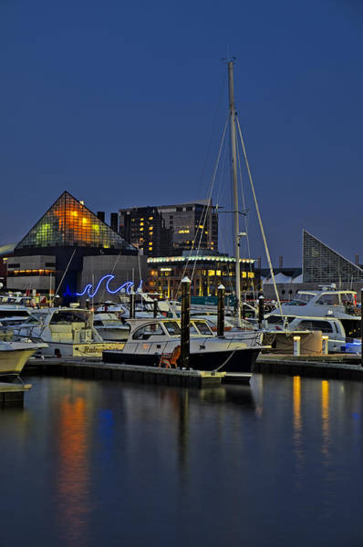 Photograph - Baltimore Harbor by Susan Candelario