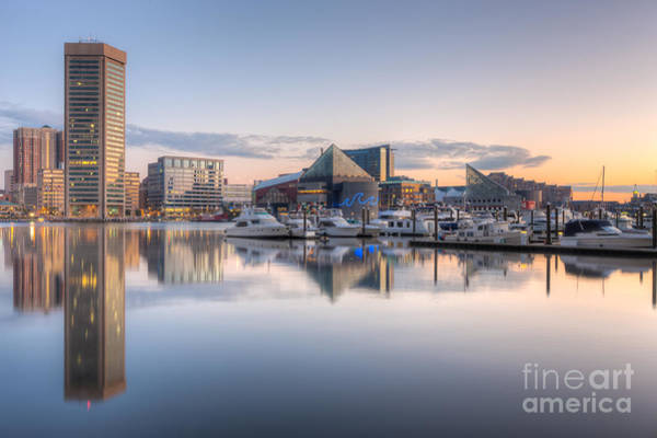 Photograph - Baltimore Inner Harbor Skyline At Dawn II by Clarence Holmes